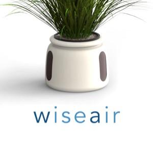 BE SEI: Wiseair